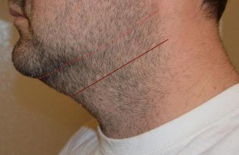 Consider shaving clean your neck hair. Many men go even closer to the chin (smaller red line), but this is really only done for men who don't plan to grow for length. You'll want a little more hair under the chin to grow long around month 2.